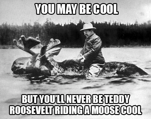 Are you Teddy Roosevelt cool?